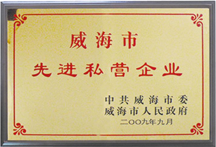 Weihai advanced private enterprises